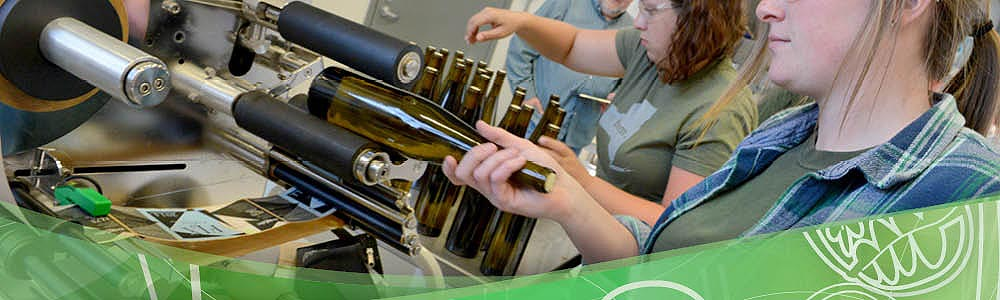 Students using labeling equipment at the Viticulture and Wine Center